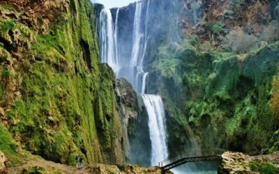 Excursion Cascades Ouzoud from Marrakech in Private