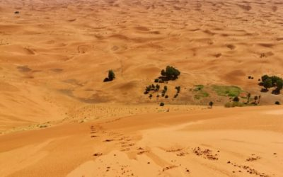 Great Moroccan south tour 6 days in 4×4